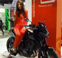 Salon EICMA 2017 - Barracuda
