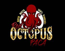 logo red octopus paca