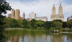 10 - New-York. Lac de Central Park